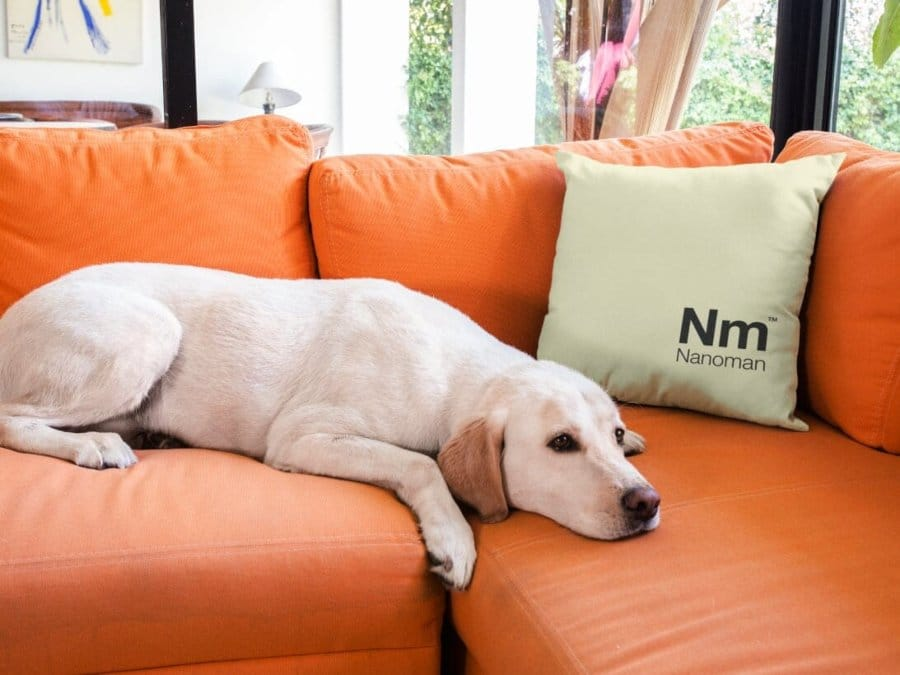 nanoman fabric couch protection, dirt repellent